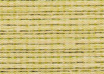 Rainforest Seagrass